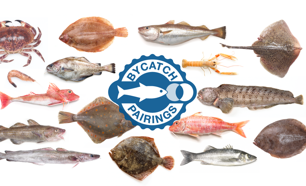 Foodpairing Recipes With North Sea Bycatch Fish