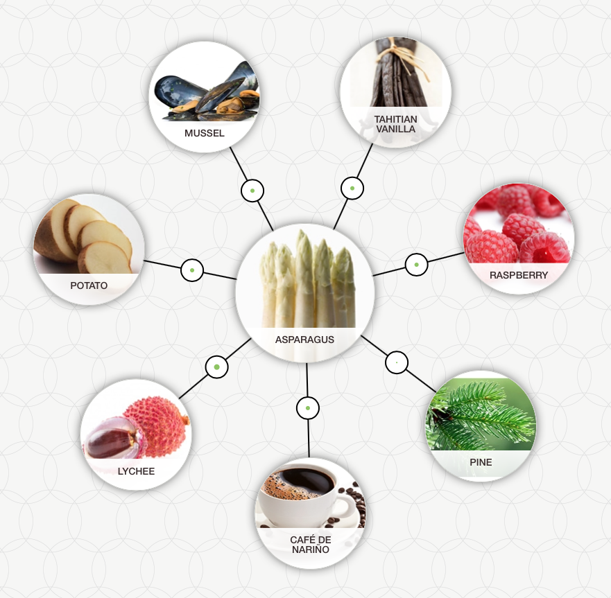 food pairing inspiration tool combinations with asparagus