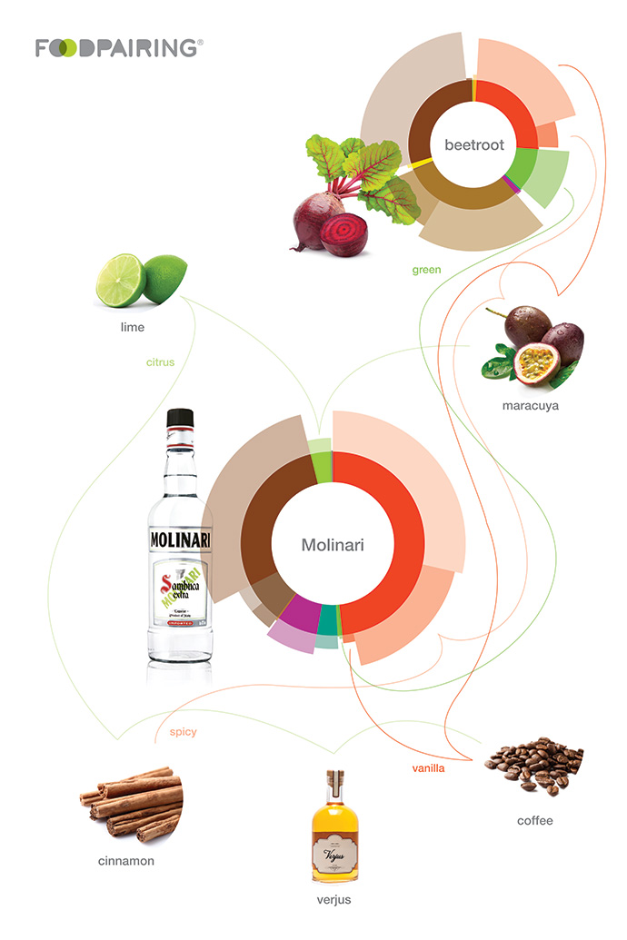 aroma pairing food pairing flavour wheel connections
