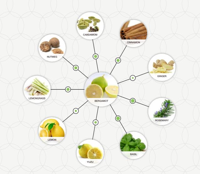 http://blog-assets.foodpairing.com/2016/02/Bergamot-aroma-tree.png