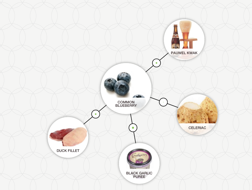 http://blog-assets.foodpairing.com/2016/03/Blueberry-Duck-pairing.png