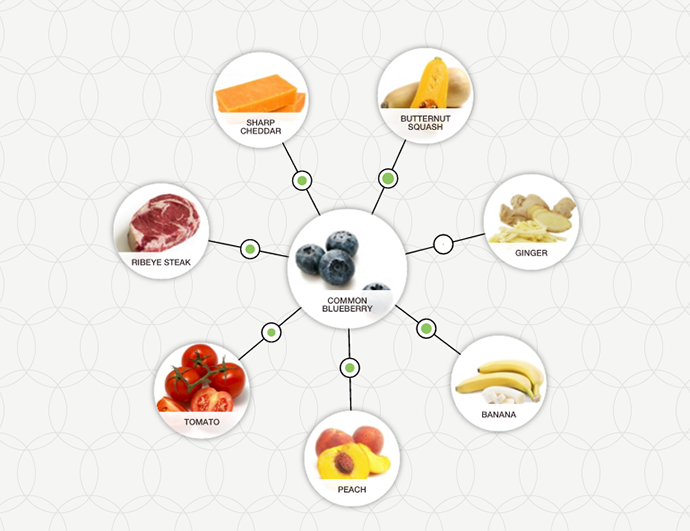 http://blog-assets.foodpairing.com/2016/04/Blueberry-Ingredient-Tree.png