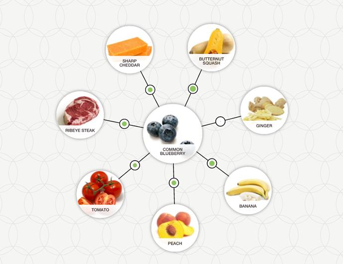 http://blog-assets.foodpairing.com/2016/04/Blueberry-Ingredient-Tree.png