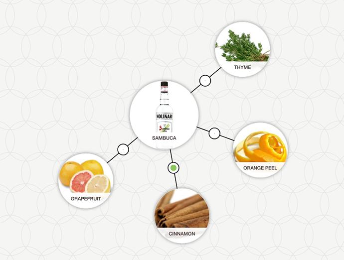 http://blog-assets.foodpairing.com/2016/05/Molinari-Sambuca-Extra-aroma-tree.png