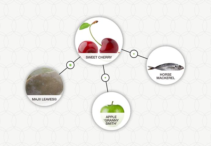 http://blog-assets.foodpairing.com/2016/07/FP-Cherry-Mackerel-ingredient-tree.png