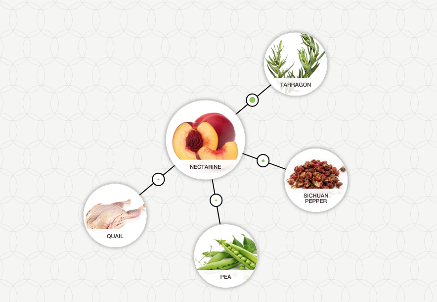 https://blog-assets.foodpairing.com/2017/08/Nectarine-Aroma-Tree.png