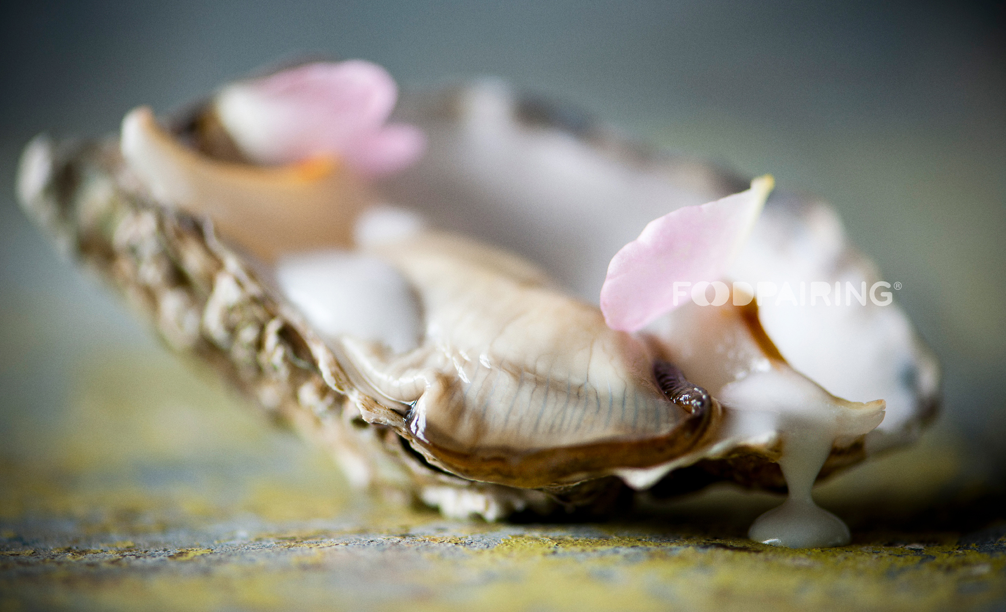 Oyster-Lychee