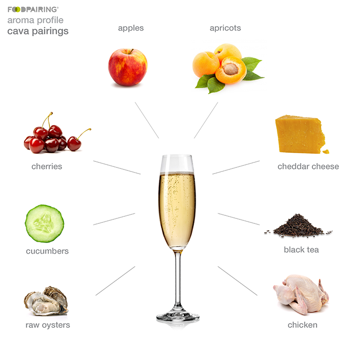https://blog-assets.foodpairing.com/2017/12/cava-pair_body.png