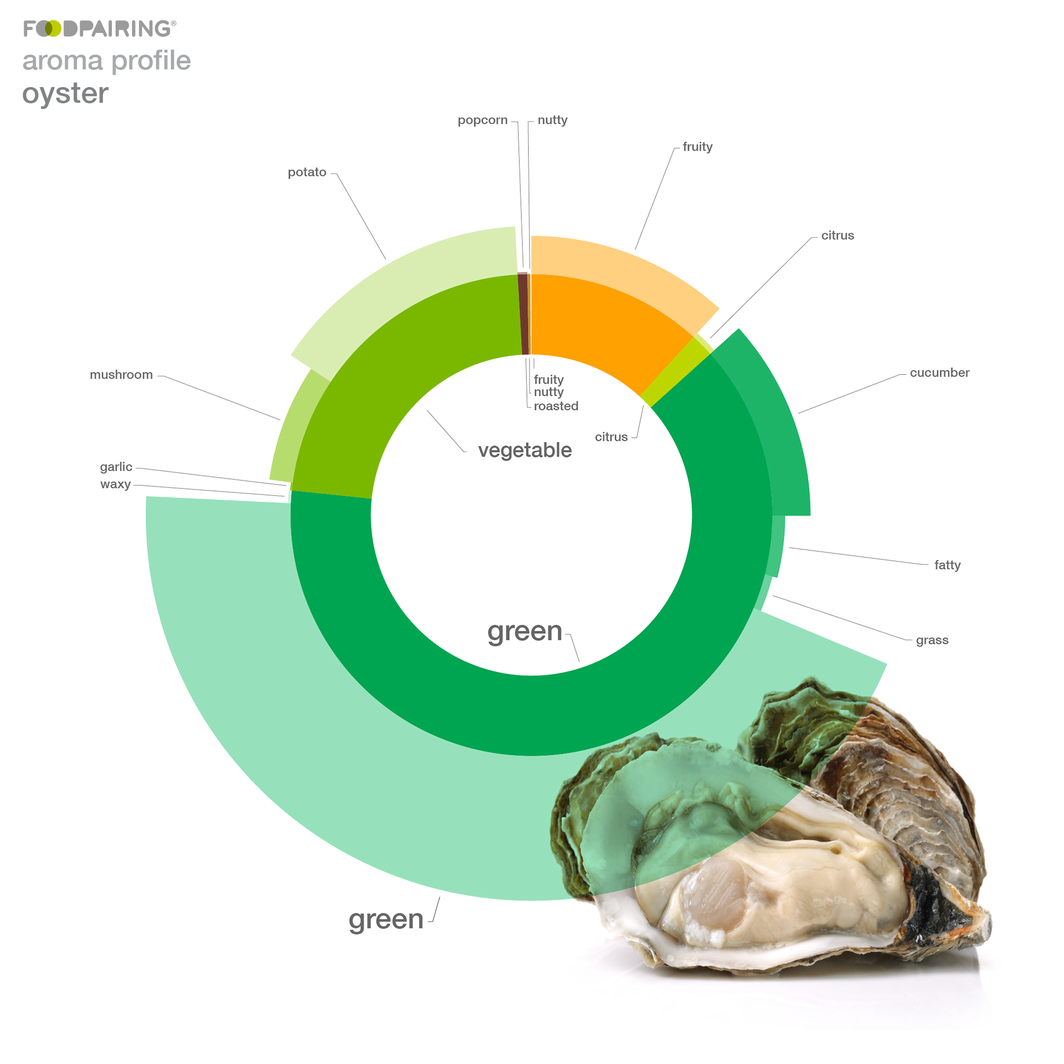 Ham Oyster Diagram - All Kind Of Wiring Diagrams •