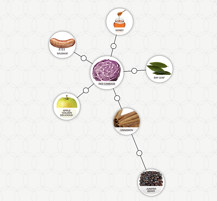 https://blog-assets.foodpairing.com/2018/01/Spiced-Red-Cabbage-Tree-700.png